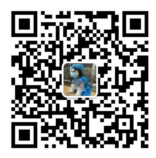 凤城网站优化