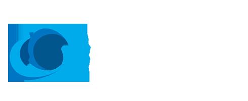 筱航科技,长春网站建设,长春企业营销,长春搜索优化,长春网络营销